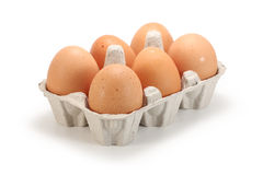 Fresh eggs in pack stock images