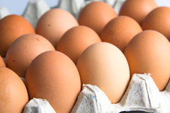 Fresh eggs in paper tray Royalty Free Stock Photos