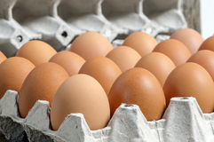 Fresh eggs on paper tray Royalty Free Stock Photography