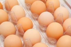 Fresh eggs in a plastic container Stock Photos