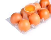 Fresh eggs on plastic tray Stock Photography