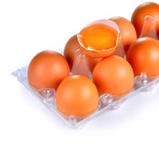 Fresh eggs on plastic tray Royalty Free Stock Images