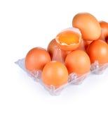Fresh eggs on plastic tray Royalty Free Stock Photos