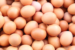 Fresh eggs for sale at a market Stock Photo