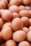 Fresh eggs for sale at a market Stock Photos