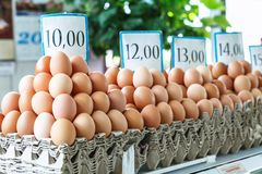 Fresh eggs at the Serbian Zeleni Venac farmer's market. Belgrade, Serbia - 19 July, 2016: fresh eggs in the cortical tray the Serbian Zeleni Venac farmer's Royalty Free Stock Photo