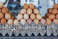 Fresh eggs at the Serbian Zeleni Venac farmer's market. Belgrade, Serbia - 19 July, 2016: fresh eggs in the cortical tray the Serbian Zeleni Venac farmer's Stock Image