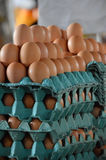 Fresh eggs stacked on cartons at market Royalty Free Stock Photography