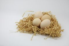 Fresh Eggs on of straw Stock Photography