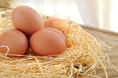 Fresh eggs on straw in a table Stock Photos