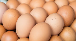 Fresh eggs on tray at market. Cooking, and food concept - background with many fresh eggs on tray at market Stock Image