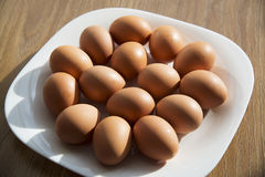 Fresh eggs in a white plate. Stock Images