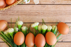 Fresh eggs. On wood background Stock Photos