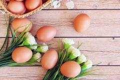 Fresh eggs. On wood background Stock Images