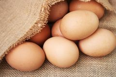 Fresh eggs on wooden background. Close up Organic of Fresh eggs on a wooden background stock images