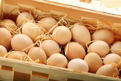 Fresh eggs in wooden box Royalty Free Stock Photos