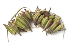 Fresh Egyptian okra. On a chain on white background Stock Image