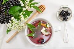 Fresh elderberry tea. Cup of fresh elderberry tea with berries and honey royalty free stock photos