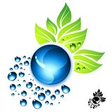 Fresh Elements Royalty Free Stock Image