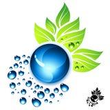 Fresh Elements royalty free illustration