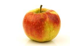 Fresh Elstar apple Royalty Free Stock Photos