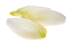 Fresh endives Stock Photos