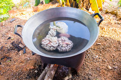 Fresh entrails pig is boiling with hot water at slaughterhouse i. This is fresh entrails pig is boiling with hot water at slaughterhouse in thailand Stock Photo