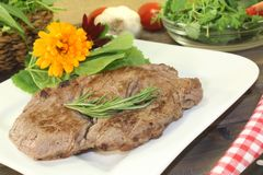 Fresh Entrecote and Wild herb salad. With rosemary royalty free stock image