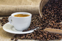 Fresh espresso coffee in white cup  with roasted coffee beans Stock Photos