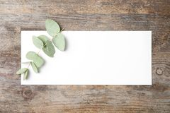 Fresh eucalyptus leaves and blank card with space for design. On wooden background, top view stock photo