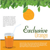 Fresh exclusive orange juice with leaf for poster, label, menu. Royalty Free Stock Photo