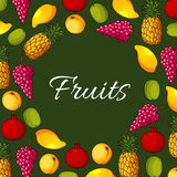 Fresh exotic fruits vector poster Stock Photo