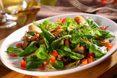 Fresh fall salad with tasty King Oyster mushrooms Royalty Free Stock Photo