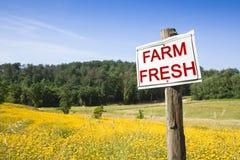 Fresh farm concept image with copy space stock photos