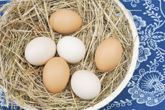 Fresh farm eggs Royalty Free Stock Images