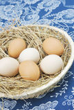 Fresh farm eggs. In scuttle with hay Stock Photography