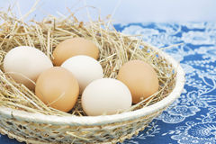 Fresh farm eggs. In scuttle with hay Stock Images