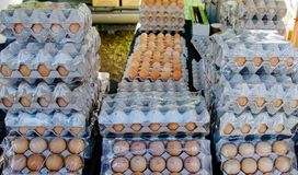 Fresh Farm Eggs displaed for sale. Large quantity of Fresh Farm Eggs displayed for sale at Gosford City Farmers Markets. Natural food. Commercial image suitable royalty free stock photography