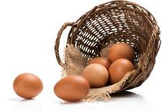 Fresh farm eggs. Royalty Free Stock Photography