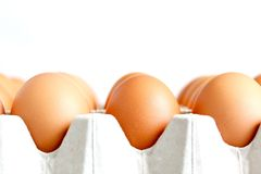 Fresh Farm Eggs On The Tray. The close up shot of some fresh farm eggs on the tray Royalty Free Stock Photo