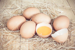 Fresh farm eggs on a wooden rustic background Stock Image