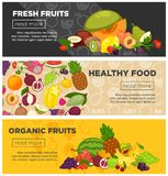 Fresh farm fruits berries healthy organic food vector banners Stock Image