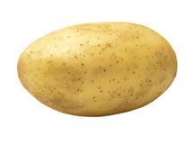 Fresh Farm Potato royalty free stock photography