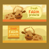 Fresh farm products. Happy cow on meadow. Editable Royalty Free Stock Photos