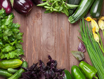 Fresh farmers garden vegetables Royalty Free Stock Photo