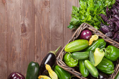 Fresh farmers garden vegetables Royalty Free Stock Photography