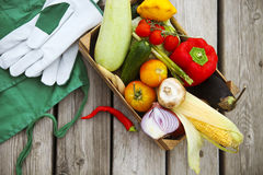 Fresh farmers market fruits and vegetables with copy space Royalty Free Stock Photo