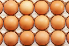 Fresh farmers raw eggs in tray Stock Photo