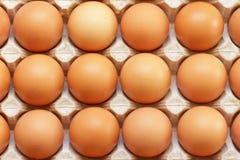 Fresh farmers raw eggs in tray Stock Photo