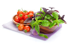 Fresh farmers tomatoes and basil. Isolated on white background Royalty Free Stock Image